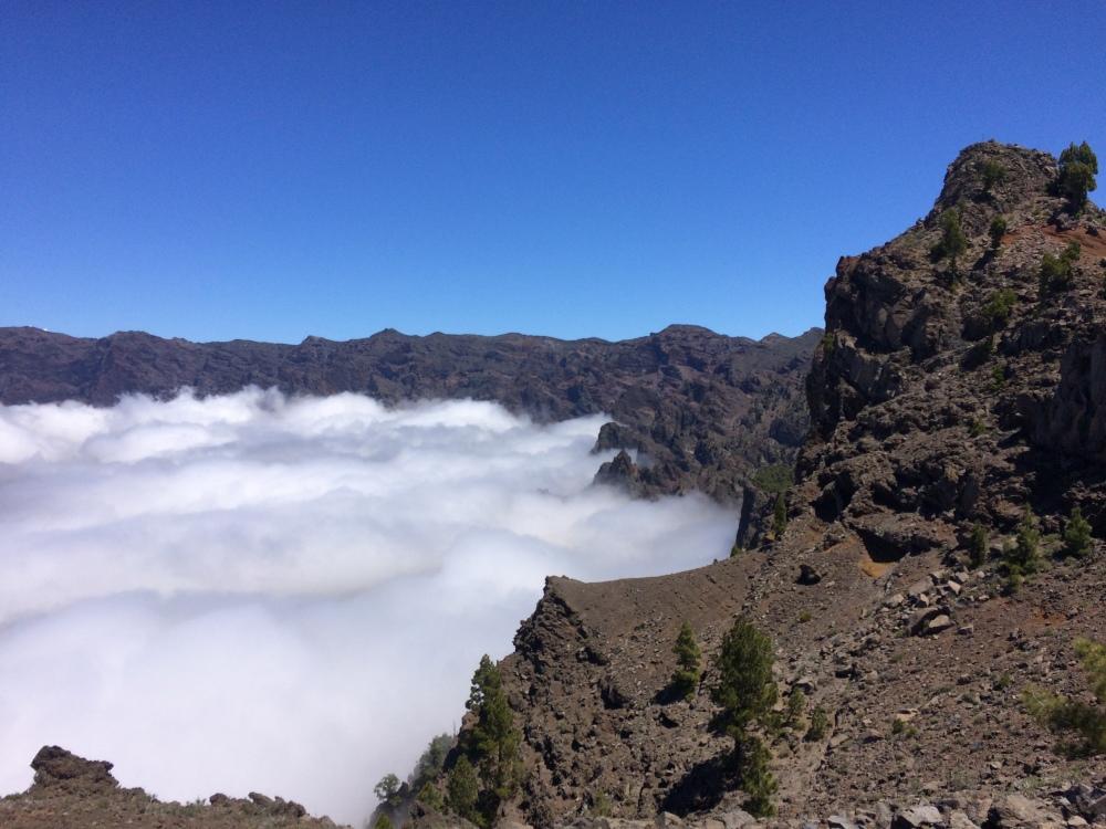 paysage_transvulcania